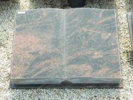 10248 Buch Kastania Form C R 60x45x12cm (2)
