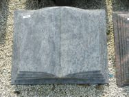 10272 Buch Orion Form F 50x40x12cm (2)