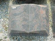 10273 Buch Himalaya Form F 50x40x12cm